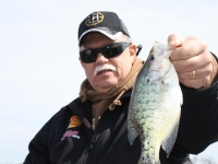 REELFOOT LAKE, A CRAPPIE MECCA | Dan Stefanich Outdoors