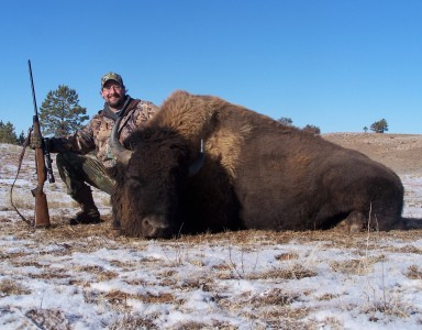 Bison-day-2-015
