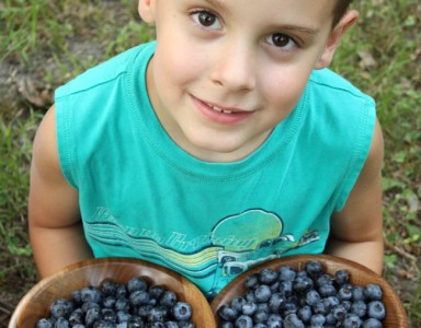 Nate Stefanich holds a couple of bowls of fresh wild blueberries. Tasty!