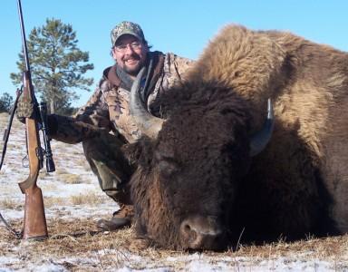 dan_stefanich_bison