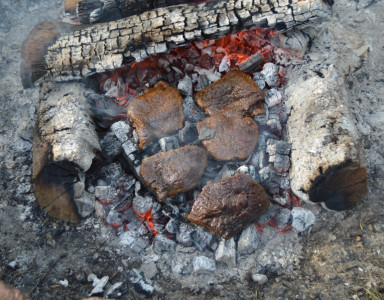 loin_steaks_on_coals