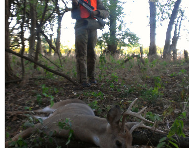 Kyle Stefanich stalks up on his very first deer during Illinois youth firearm season October of 2012. He made a perfect double lung shot which made for a pretty easy tracking job.